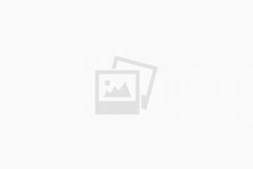 מוהל מורשה – חבר בכיר – מגן כינור משולב כסף וזהב – שנה ה'